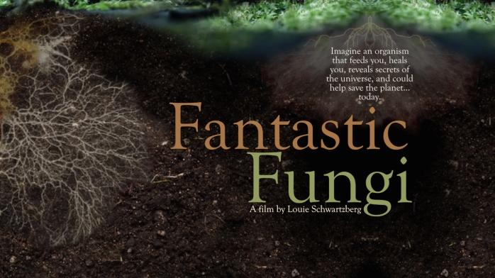 Fantastic-Fungi-Film